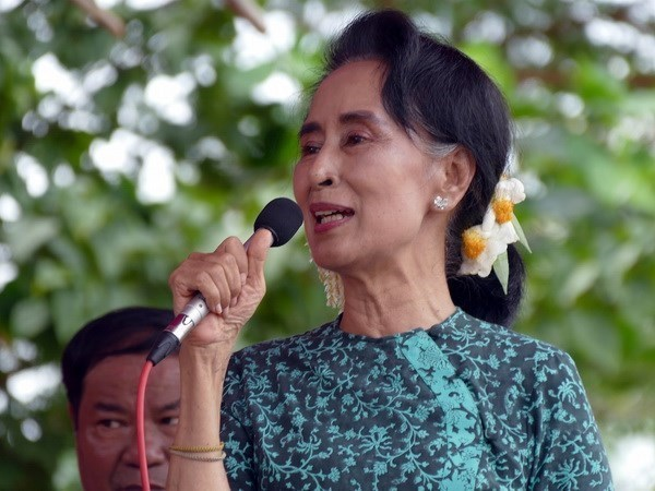 Myanmar: San Suu Kyi elegida a la camara baja hinh anh 1