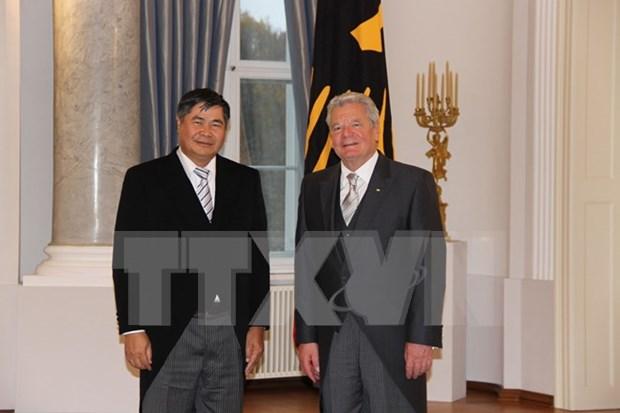 Presidente aleman califica de satisfactorias relaciones con Vietnam hinh anh 1