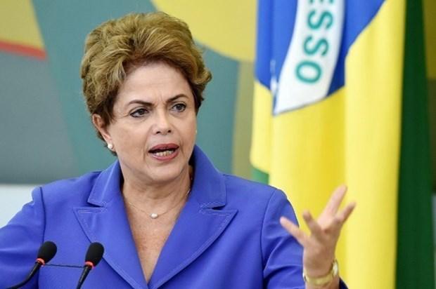 Proxima visita de Dilma Rousseff a Vietnam impulsara nexos en defensa hinh anh 1
