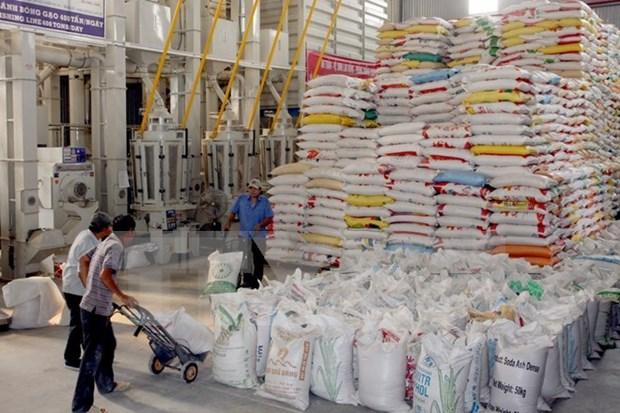 Exportaciones del arroz de Vietnam van viento en popa hinh anh 1