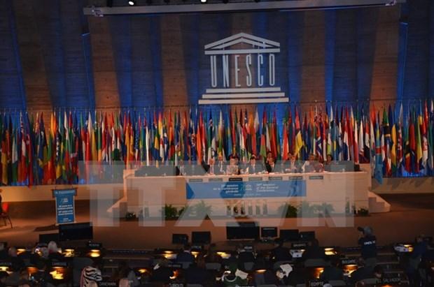 Vietnam elegido como miembro del Consejo Ejecutivo de UNESCO hinh anh 1