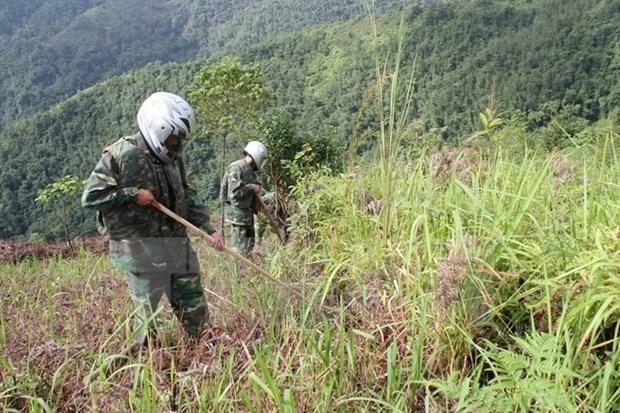 Sudcorea ayuda a Vietnam en desactivacion de bombas y minas hinh anh 1