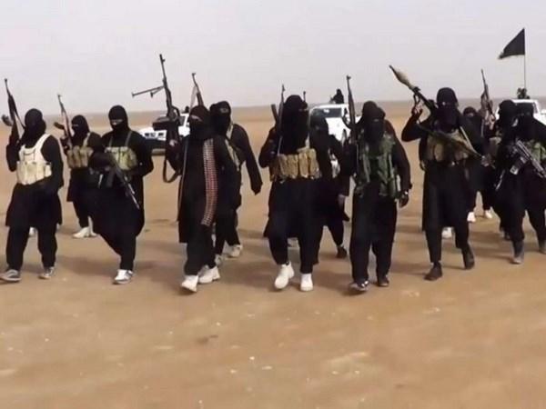 Estado Islamico intenta reclutar a especialistas malasios e indonesios hinh anh 1