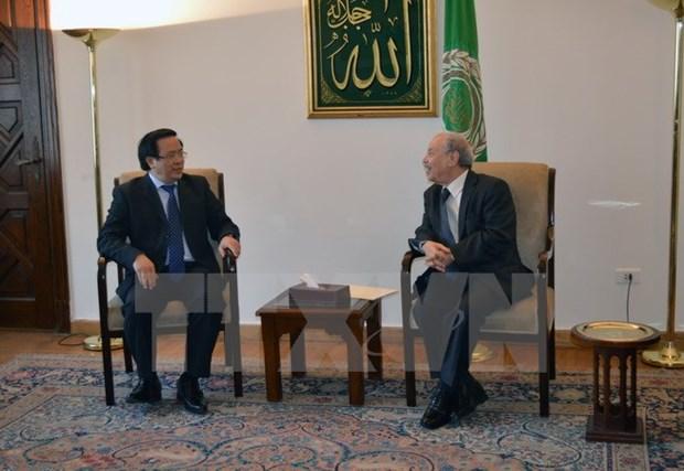 Vietnam y Egipto acuerdan profundizar nexos bilaterales hinh anh 1