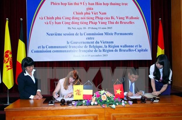 Asistencia belga a Vietnam para ejecucion de proyectos importantes hinh anh 1