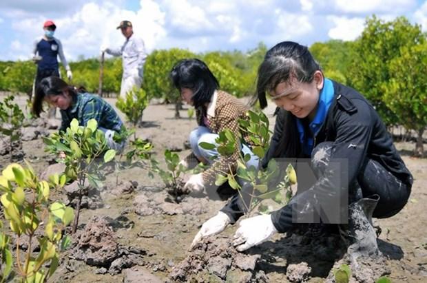 UE apoya Vietnam en lucha contra cambio climatico hinh anh 1
