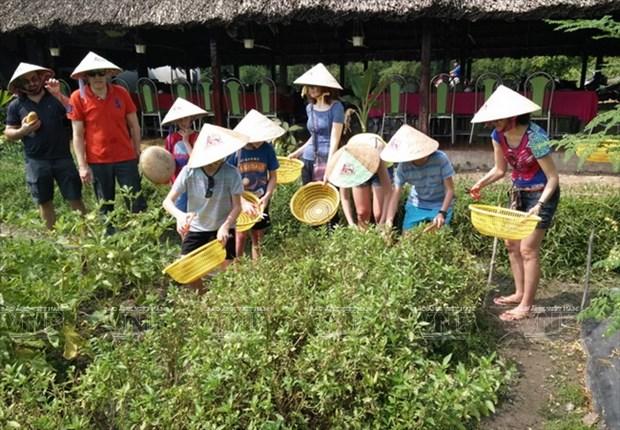 Visitantes extranjeros aprenden a ser agricultores vietnamitas hinh anh 2