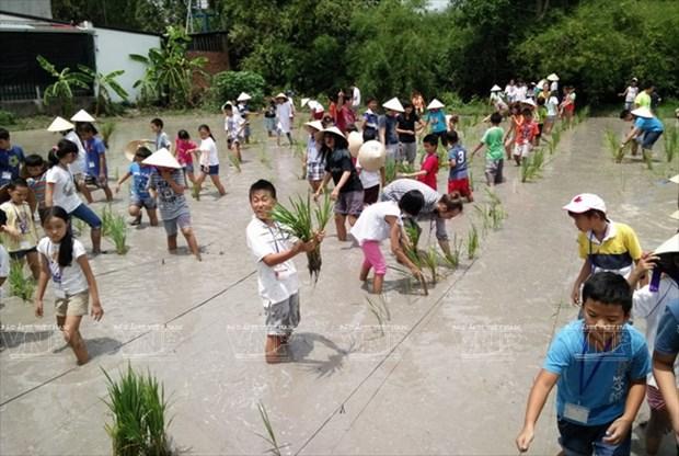Visitantes extranjeros aprenden a ser agricultores vietnamitas hinh anh 3