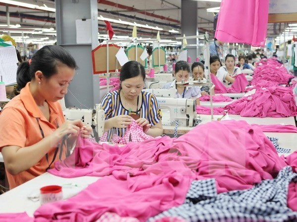 OIT dispuesta a apoyar a Vietnam para afinar regulaciones laborales hinh anh 1