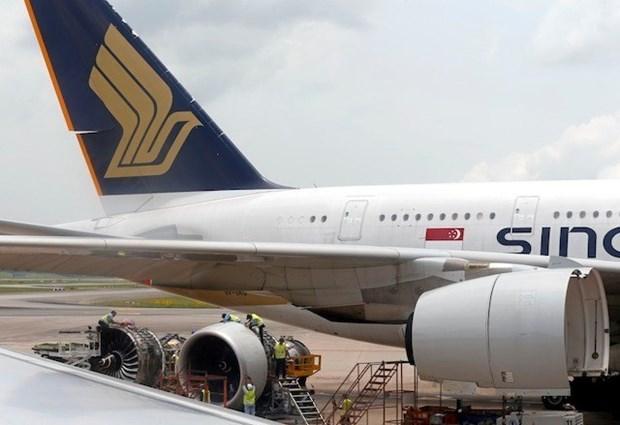 Avion singapurense aterriza seguramente ante amenaza de bomba hinh anh 1