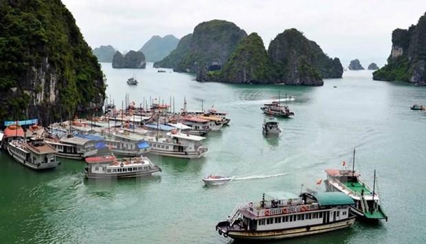Llegadas de turistas rusos a Vietnam crecen 60 por ciento en octubre hinh anh 1