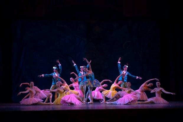 """""""El cascanueces"""" brindara la magia de Navidad al publico vietnamita hinh anh 1"""