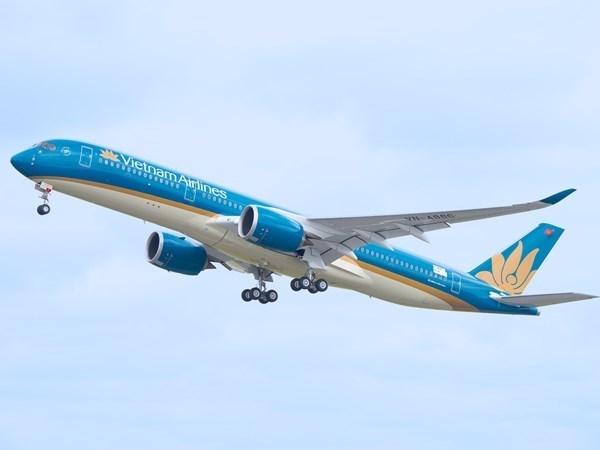 Aviacion vietnamita acelera preparacion para integrar en mercado de ASEAN hinh anh 1