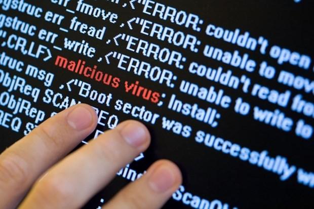 Mas de 30 millones de computadoras en Vietnam afectadas por nuevos virus hinh anh 1