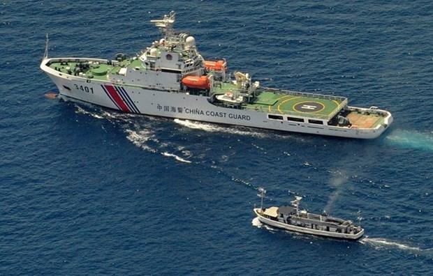 Vietnam respalda solucion pacifica de disputas en Mar del Este hinh anh 1