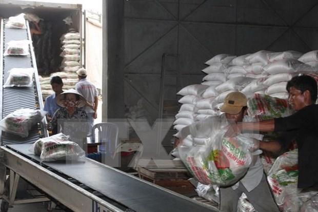 Alcanza exportacion de arroz vietnamita un abrupto aumento en volumen hinh anh 1