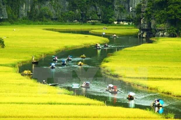 Vietnam destaca papel de la comunidad en la preservacion del patrimonio hinh anh 1