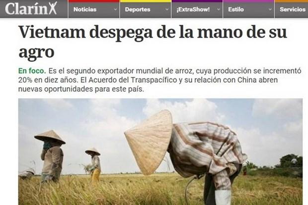 Prensa argentina resalta exitos del sector agricola vietnamita hinh anh 1