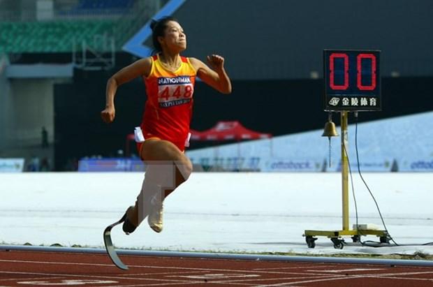130 atletas vietnamitas participaran en Paralimpicos de ASEAN hinh anh 1