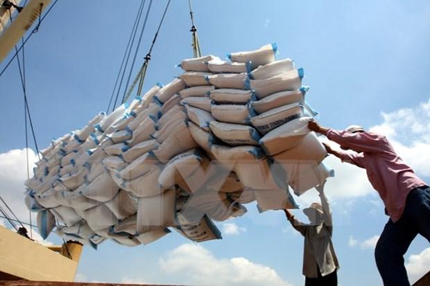 Necesita Indonesia importar un millon de toneladas del arroz de Vietnam hinh anh 1