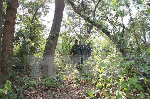 Destacan eficiencia de labores de demarcacion fronteriza Vietnam – Laos hinh anh 1