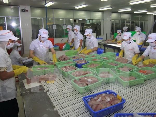 Pescado vietnamita encara nueva barrera en penetracion en mercado de EE.UU hinh anh 1