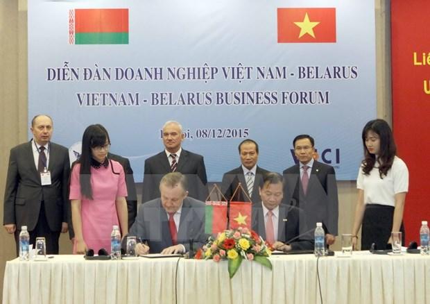 Empresas de Vietnam y Bielorrusia buscan oportunidades de inversion hinh anh 1