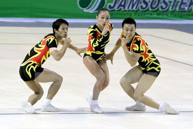 Logra Vietnam 10 medallas doradas en torneo asiatico de aerobic hinh anh 1