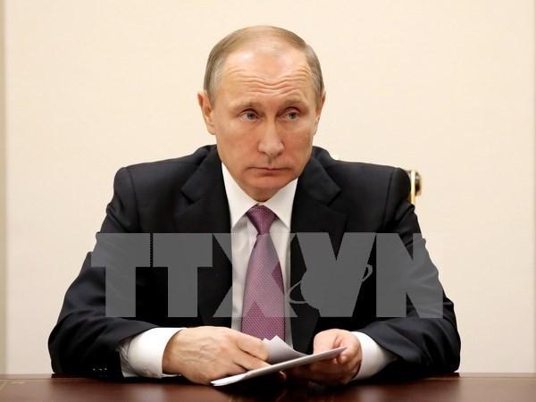 Presidente ruso llama a promover cooperacion economica con ASEAN hinh anh 1