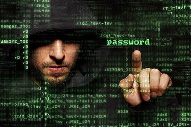 Sufre Vietnam mas de 31 mil 500 ciberataques en 2015 hinh anh 1