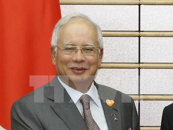 Lideres del Sudeste de Asia trasmiten mensajes por ano nuevo hinh anh 1