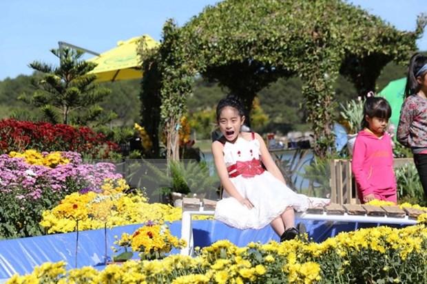 Da Lat atrae a 500 mil visitantes en Festival de Flores hinh anh 1