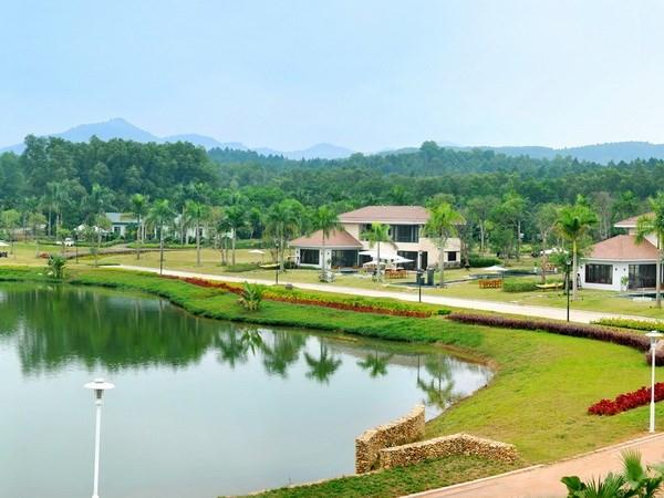 Desarrollan zonas urbanas verdes en Vietnam hinh anh 1