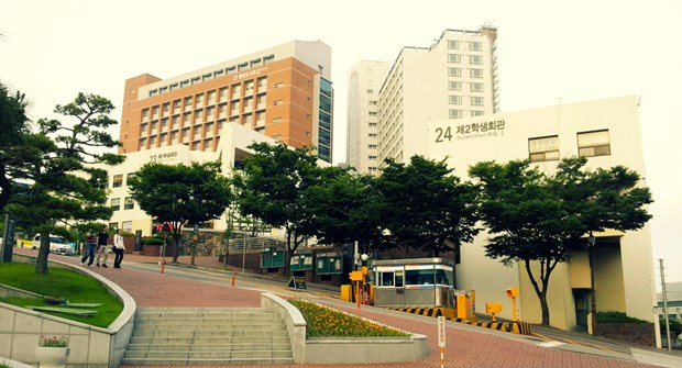 Dong Nai y universidad sudcoreana cooperan en formacion de recursos humanos hinh anh 1