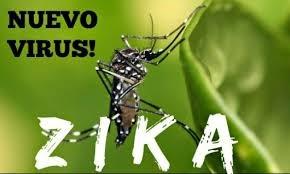 Vietnam no reporta ningun caso infectado por virus Zika hinh anh 1