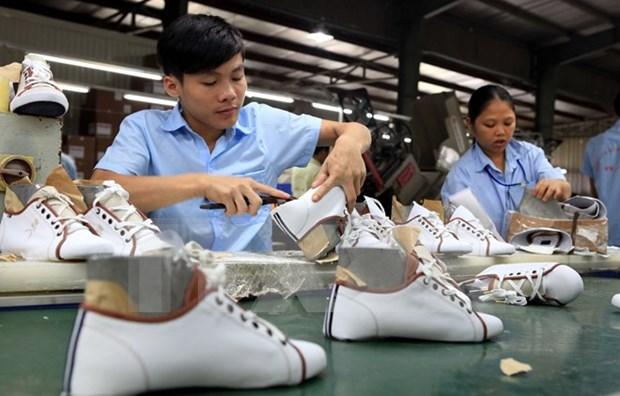 Ventas de calzado y bolsas vietnamitas suman 14 mil millones USD en 2015 hinh anh 1