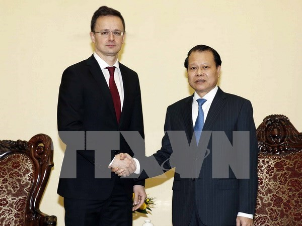 Robustecen Vietnam y Hungria cooperacion en todas las esferas hinh anh 2