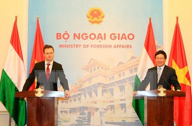 Robustecen Vietnam y Hungria cooperacion en todas las esferas hinh anh 1