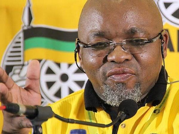 Partidos de Sudafrica desean exito al XII Congreso Nacional del PCV hinh anh 1