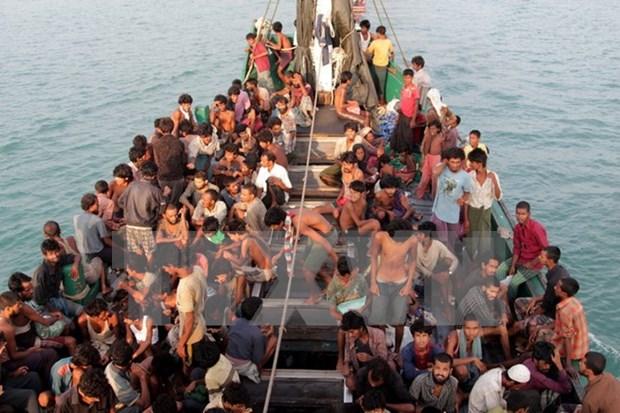 Policias de Vietnam, Laos y Cambodia lanzan ofensiva contra trafico humano hinh anh 1