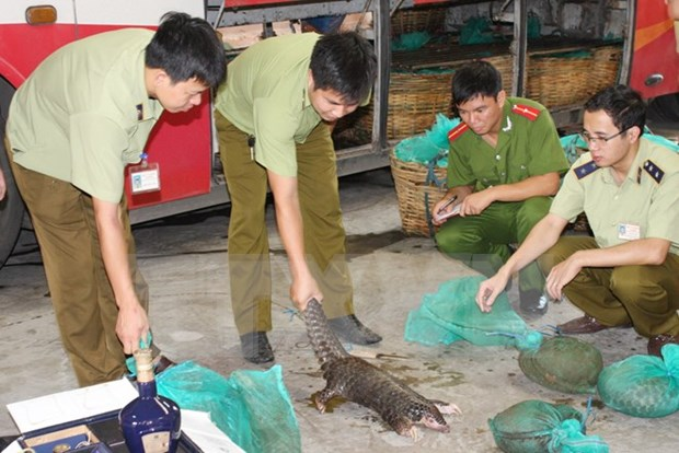 Vietnam celebrara conferencia internacional sobre comercio de animales salvajes hinh anh 1