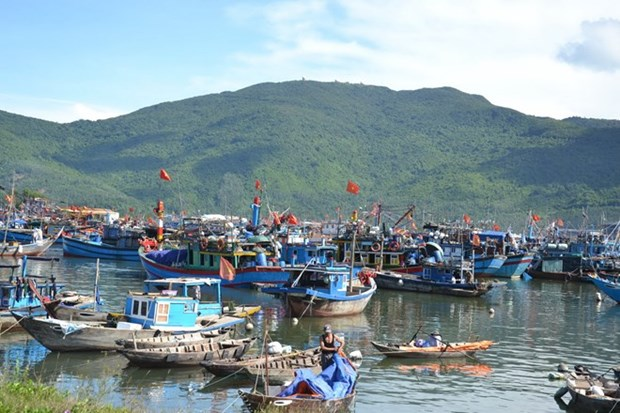 Arranca construccion de area conmemorativa a soldados caidos por Hoang Sa hinh anh 1