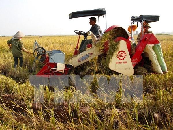 Vietnam aspira a 31 mil millones de dolares de exportaciones agricolas en 2016 hinh anh 1