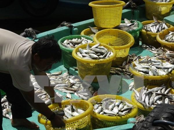 Grupo tailandes de productos acuaticos planea fundar compania mixta en Vietnam hinh anh 1