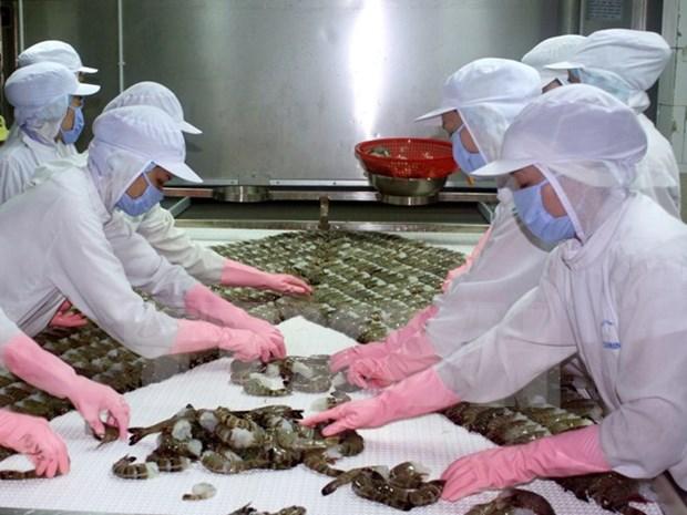 Exportacion de camarones vietnamitas muestra senales positivas este ano hinh anh 1
