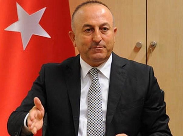 Indonesia y Turquia intensifican cooperacion antiterrorista hinh anh 1