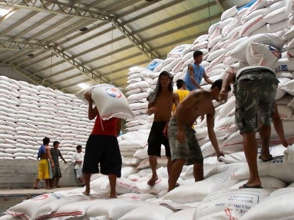 Exportacion de arroz vietnamita muestra senales positivas a principios de ano hinh anh 1
