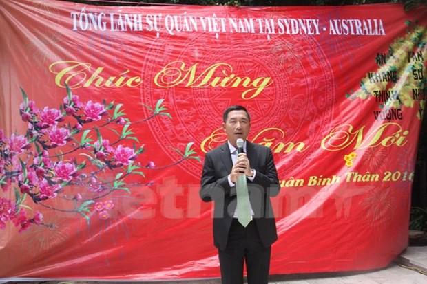 Residentes vietnamitas en ultramar celebran encuentros en ocasion del Tet hinh anh 1