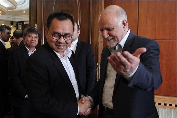 Impulsan Indonesia e Iran cooperacion energetica hinh anh 1