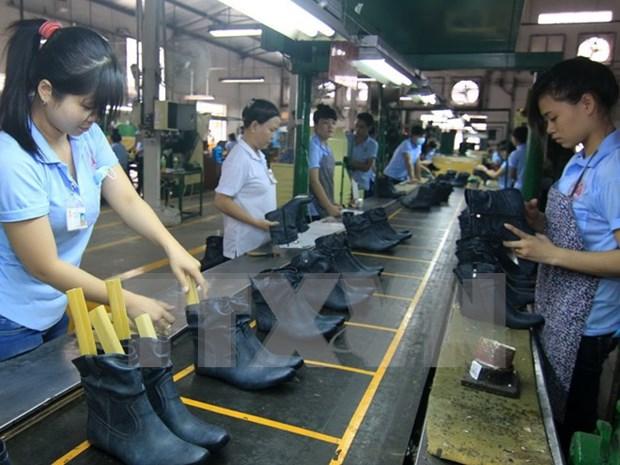 Sector del calzado de Vietnam se prepara para TPP hinh anh 1